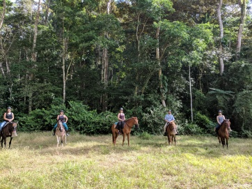 Here we are with our rescued horses!